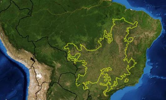 Cerrado region