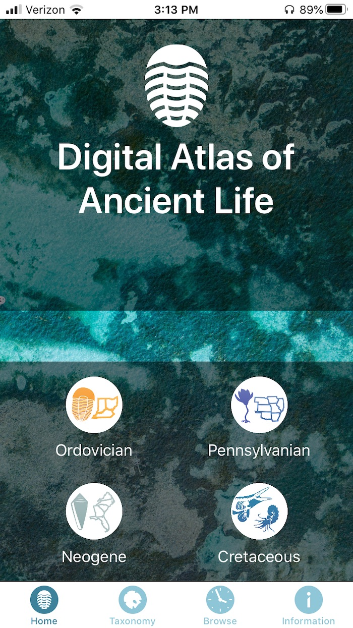 New Version of Fossil-Recognition App Now Works on Android Smartphones and Includes Cretaceous Period
