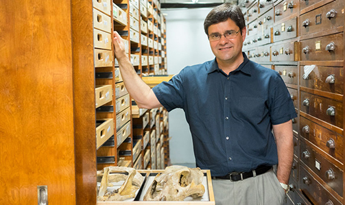 paleontologist to deliver distinguished professor inaugural lecture